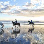 horserancho