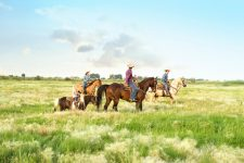 A Family of cowboys/girls out for a leisure ride on their horses in a beautiful meadow. Two men, one woman and one small child.  Each riding their own horse.
